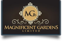 Magnificent Garden
